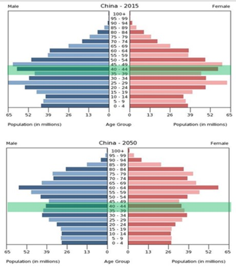 現在と2050年時点での人口ピラミッドー急速に進む高齢化ー